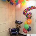 Шары на День Рождения №125