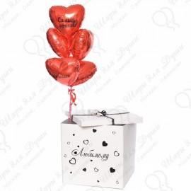 Коробка для запуска воздушных шаров.